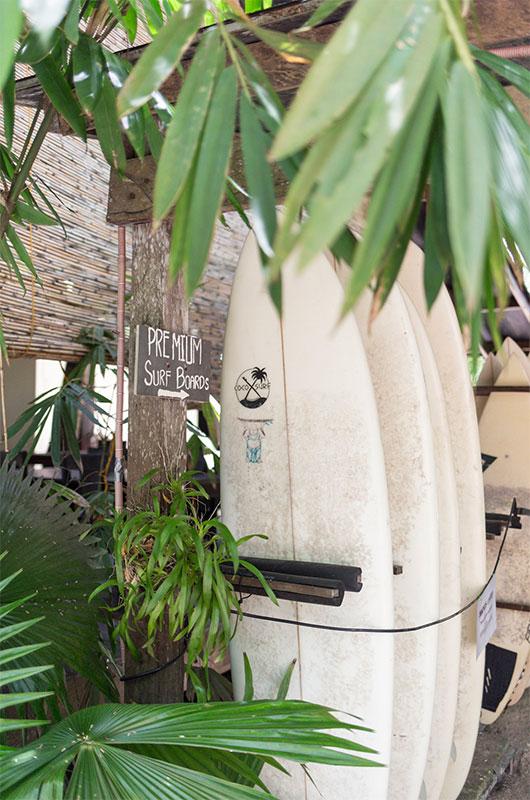 Tropical plants surrounding the balconies at Buddha Resort
